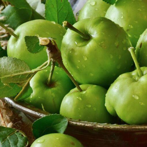 Zelené-jablko-Gourmet-Artisan-600×600